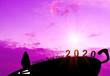 Leinwanddruck Bild - Silhouette happy new year. Concept welcome new year 2020 rat year zodiac.