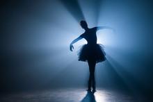 Ballerina In Black Tutu Dress ...