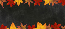 Autumn – Frame Of Colorful L...