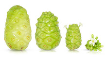 Noni Or Morinda Citrifolia And...
