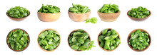 Set Of Fresh Green Basil Leaves In Bowls On White Background