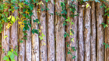 Wood Log Fence Background With...