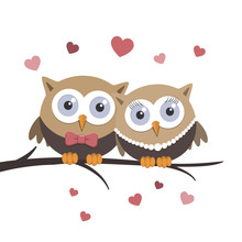 Valentine Owls In Love On A Wh...