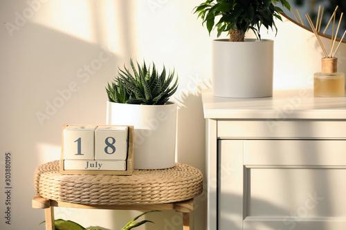Fototapeta Wooden block calendar and succulent on wicker chair indoors obraz na płótnie