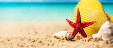 Tropical Summer Vacations - Se...