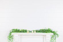 Mock Up White Wall In The Interior With Greenery