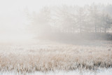 Moody Filtered Image of Misty Morning at Lake in Autumn - 303892560