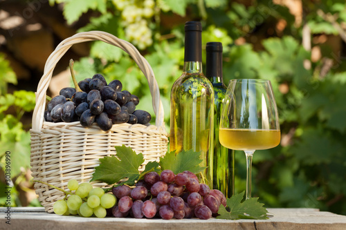 Obraz na plátně  Colorful grapes and white wine