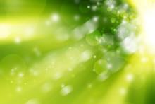 Green Bokeh Blur Background / Circle Light On Green Background.