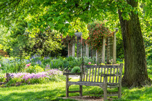 Wooden Bench At Flower Garden ...