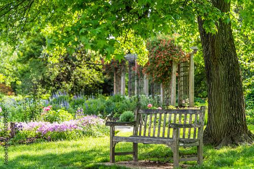 Photo wooden bench at flower garden park