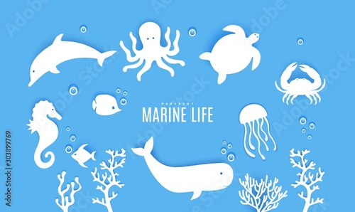Photo Set ot silhouette of marine life cut out of paper