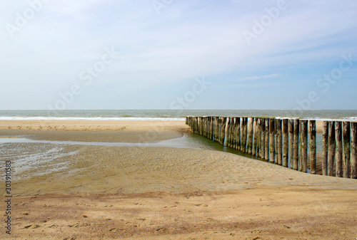 Fototapety, obrazy: Wave breaker made of wooden stakes on the beach
