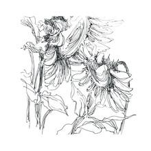 Sunflower Sketch, Sunflower Hand Drawn, Sunflower Sketch Vector, Sunflower Sketch Flower, Sunflower Illustration