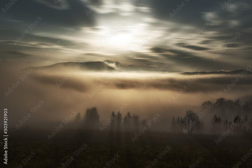 Fototapeta fog