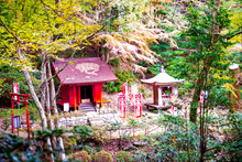 両子寺の紅葉