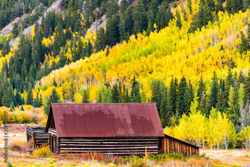 Foto auf Leinwand Orange Castle Creek road wooden house cabin building in Ashcroft ghost town with yellow foliage aspen trees in Colorado rocky mountains autumn fall