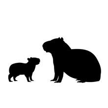 Silhouette Of Capybara And Young Little Capybara