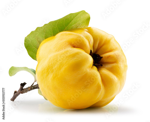 Photographie quince with leaves isolated on a white background
