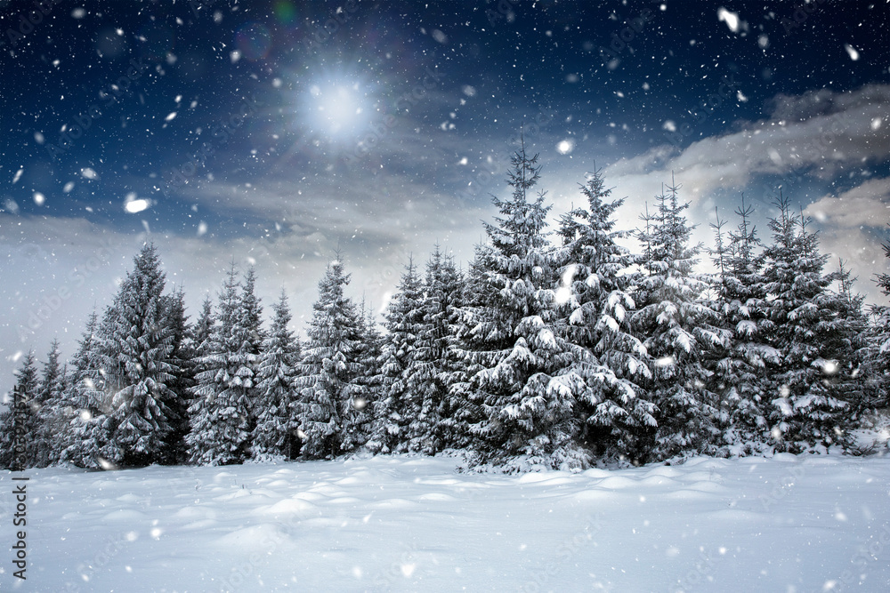 Fototapety, obrazy: Fairy-tale winter landscape and cottage in woods at winter. Christmas concept.