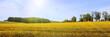 Frühsommerliche Sonne über weiter Landschaft, Rügen, Panorama