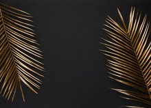 Gold Painted Palm Leaf On Blac...