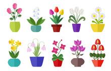 Flower Flat Icon Set Isolated ...