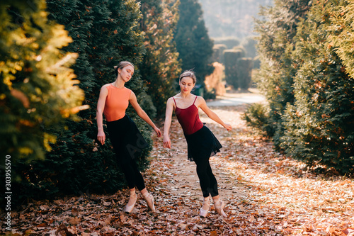 Two funny ballerinas practicing and falling on autumn leaves on the ground in sunny park Tableau sur Toile