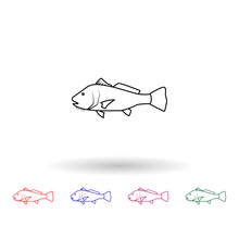 Black Drum Multi Color Icon. Simple Thin Line, Outline Vector Of Fish Icons For Ui And Ux, Website Or Mobile Application