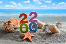 Number 2020, Sea Shell, Starfi...