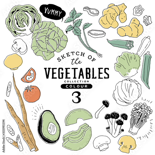 Fototapeta オシャレな手描き野菜セット03/カラフル obraz