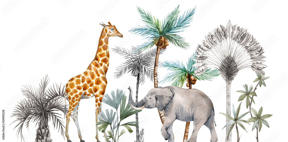 Fototapeta Watercolor safari animals with tropical palms composition. African giraffe, elephant.