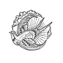 Flying Swallow Engraving Art