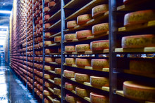 Wheels Of Cheese In A Maturing...