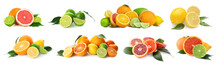 Different Tasty Citrus Fruits On White Background