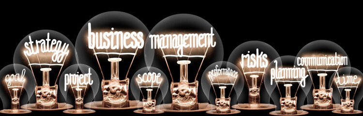 Light Bulbs with Business Management Concept