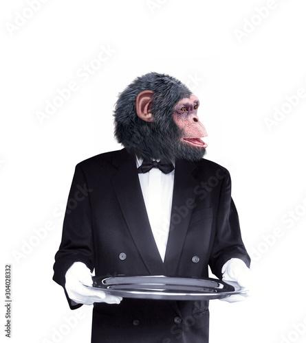chimpanzé, maître d'hôtel , tenir un objet, tenir un plateau, expression,  smoki Canvas Print