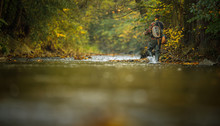 Handsome Fly Fisherman Working...