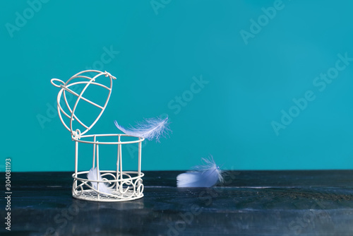 Minimalistic still life of a birdcage on a table and scattered feathers Canvas Print