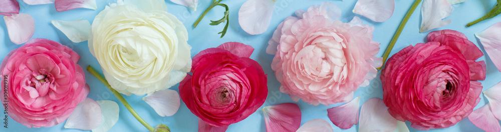 Fototapety, obrazy: Flowers on a light blue background