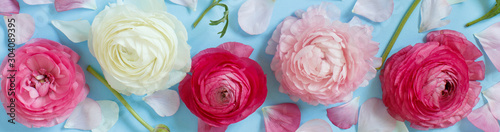 Flowers on a light blue background - 304089395
