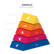 Animals Concept 3d Pyramid Chart Infographics Design Included Stork, Tortoise, Tropical Frop, Tuna, Vulture, _icon6_, _icon7_, _icon8_ Icons