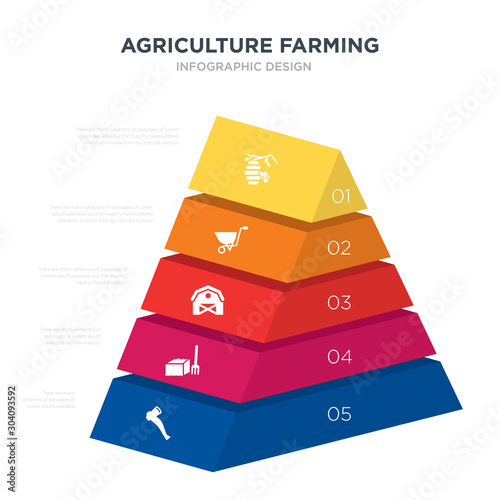 Photo agriculture farming concept 3d pyramid chart infographics design included axe, b