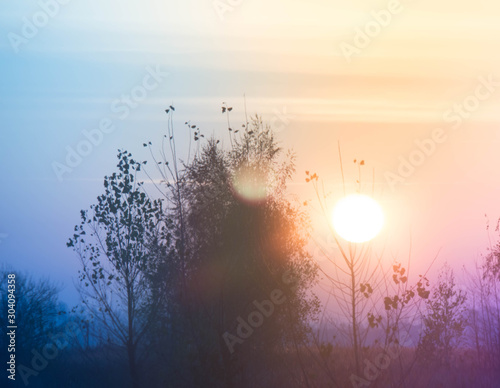 Wall Murals Beautiful morning Dawn of the sun early morning in nature
