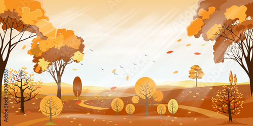 Vector Autumn landscape farm field with orange sky, Beautiful morning sunlight shining in Autumn forest,Panorama virew of countryside with yellow foliage, Fall season with copy space for banner backgr