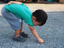 Asian Child Boy Balance Self  ...