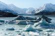 Abgebrochene Eisberge schwimmen auf dem See des Tasman Gletschers im Mount Cook National Park in Neuseeland