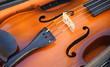 Geige mit Steg und Saiten