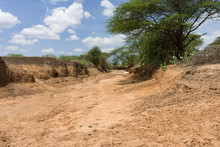 A Dry Dusty River Bed Due To Lack Of Rain, Kajiado County, Kenya, East Africa