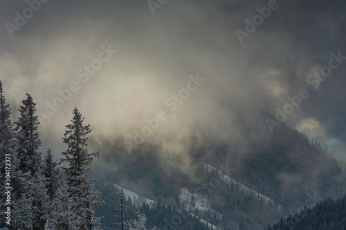 Foto auf Leinwand Dunkelgrau Fogs and clouds in winter Ukrainian Carpathians with snow-covered trees and mountain peaks